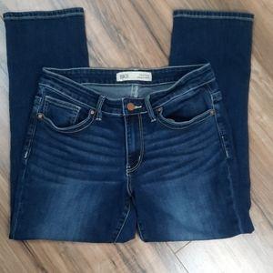 BKE Payton Universal Fit MidRise Jeans Size 28